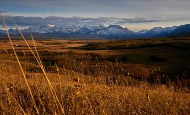 _MG_1489 Waterton National Park