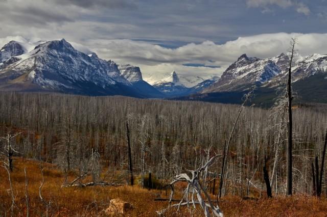 _MG_1883 Glacier National Park