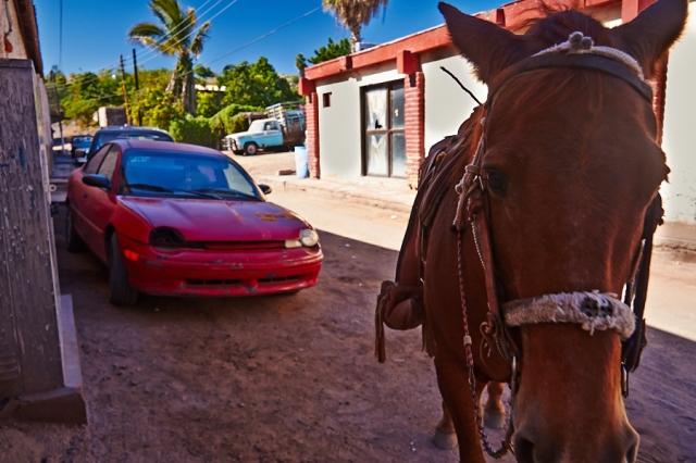 _MG_4652 Baja California 2