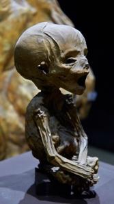 _MG_5155 Guanajato mumier