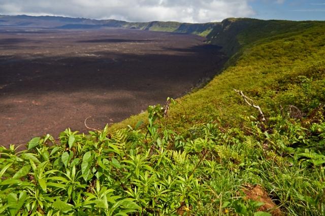 Galapagos Vulkanbestigning (1)