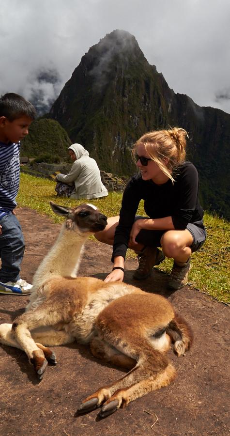 Machu Piccu nye venner