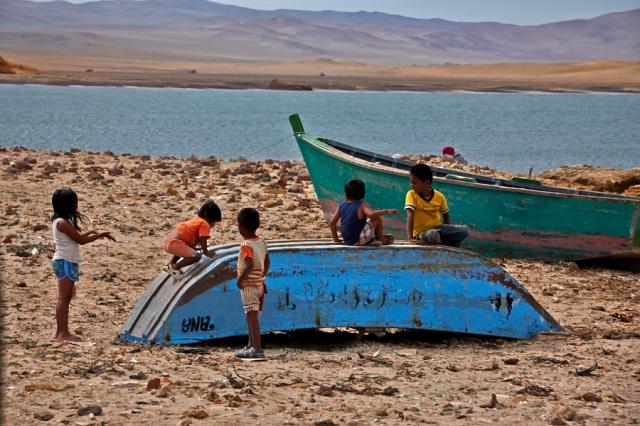 Paracas kyststrækning (10)