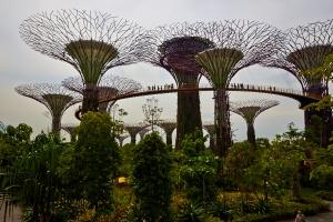 _MG_2284 Singapore