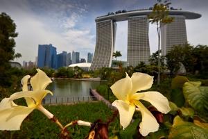 _MG_2286 Singapore