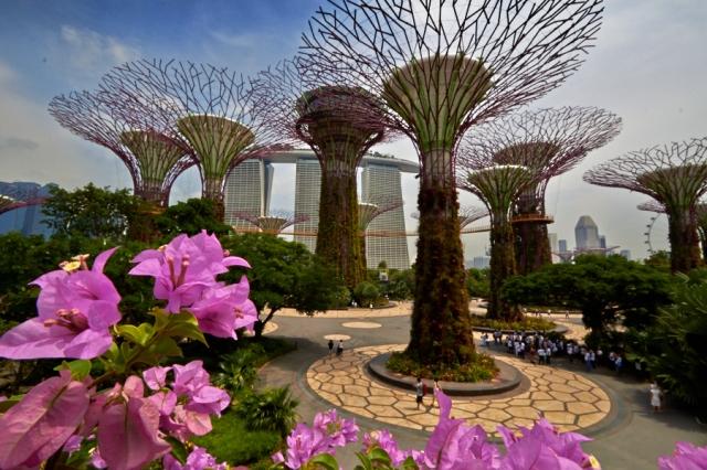 _MG_2308 Singapore