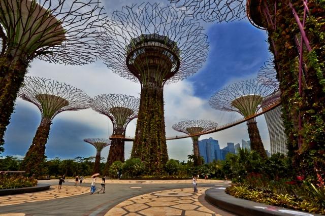 _MG_2323 Singapore