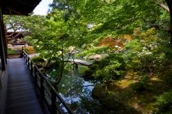 _MG_3715 Kyoto
