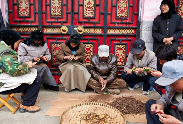 _MG_6572 Xiahe