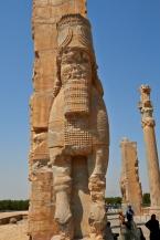 _MG_0321 Shiraz